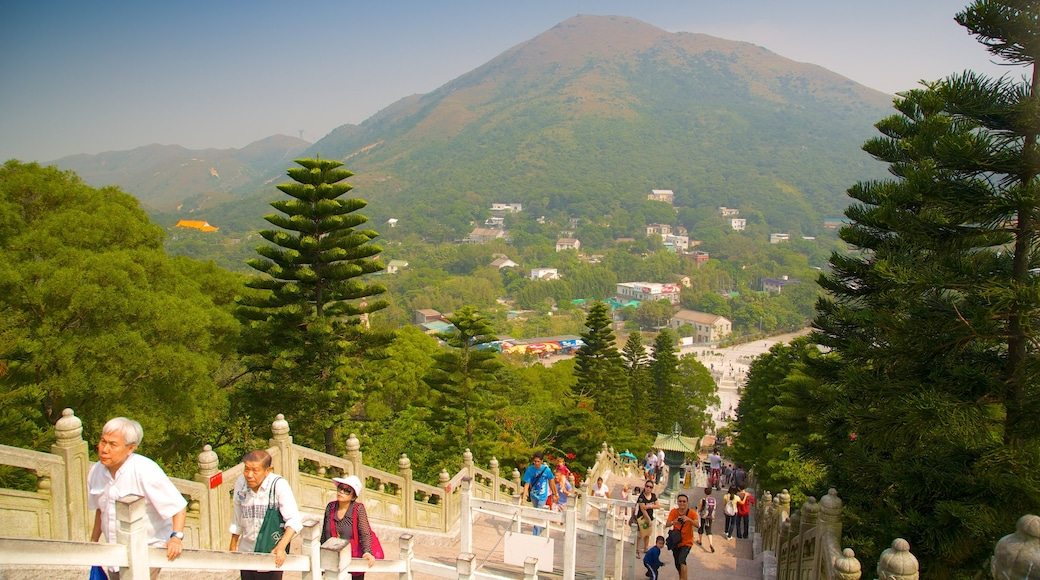 Big Buddha featuring hiking or walking, forests and mountains