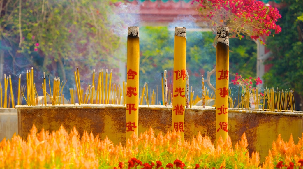 Po Lin Monastery which includes religious elements, a temple or place of worship and flowers