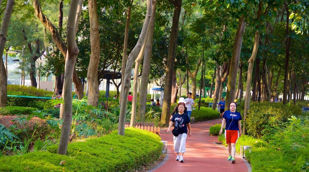 Victoria Park showing a park