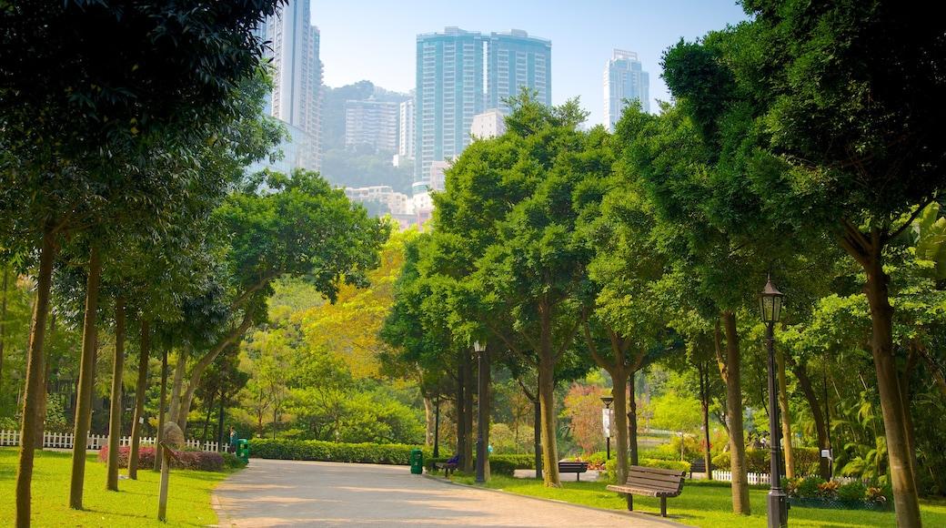 香港公園 呈现出 公園