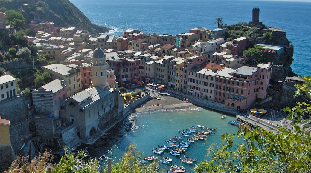 Cinque Terre - La Spezia which includes a coastal town, a bay or harbour and boating