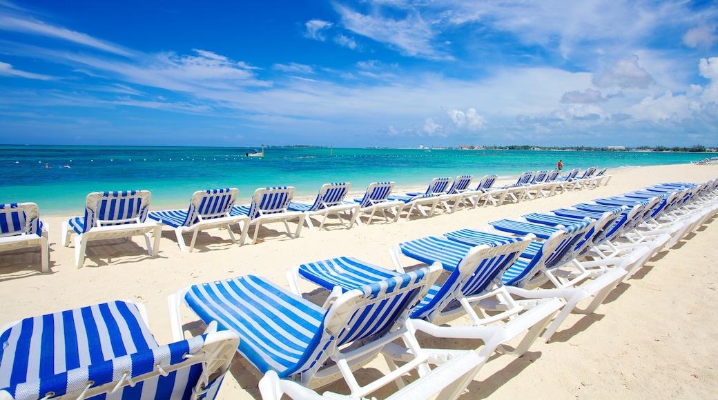 Cable Beach showing a beach