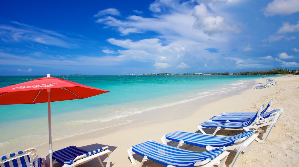 Cable Beach featuring a sandy beach and tropical scenes