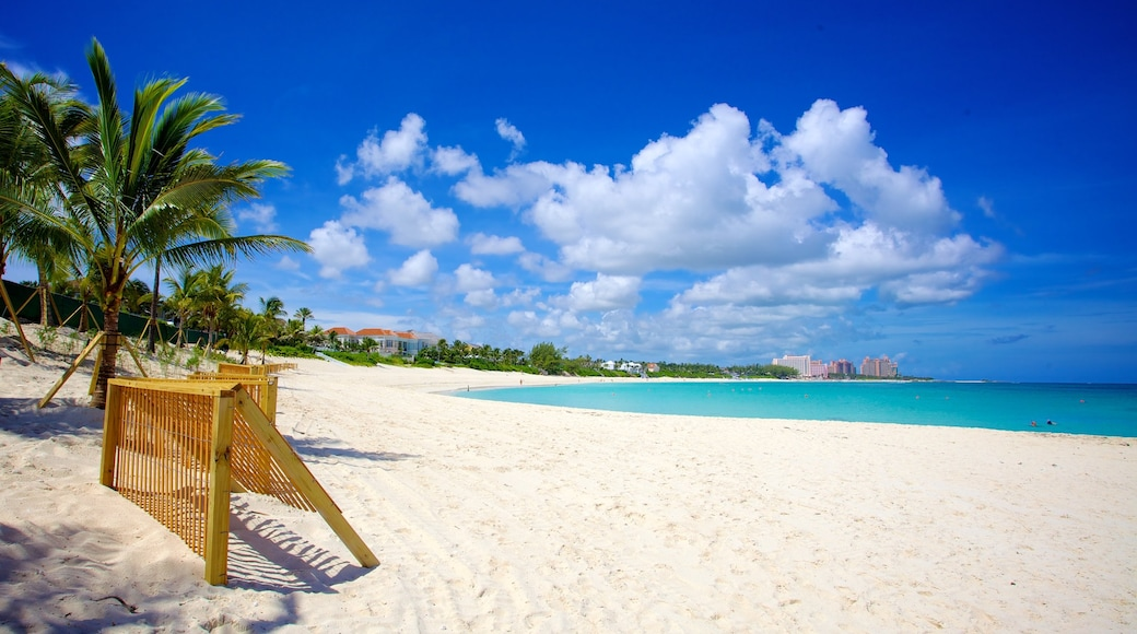 Cabbage Beach which includes a sandy beach, landscape views and tropical scenes