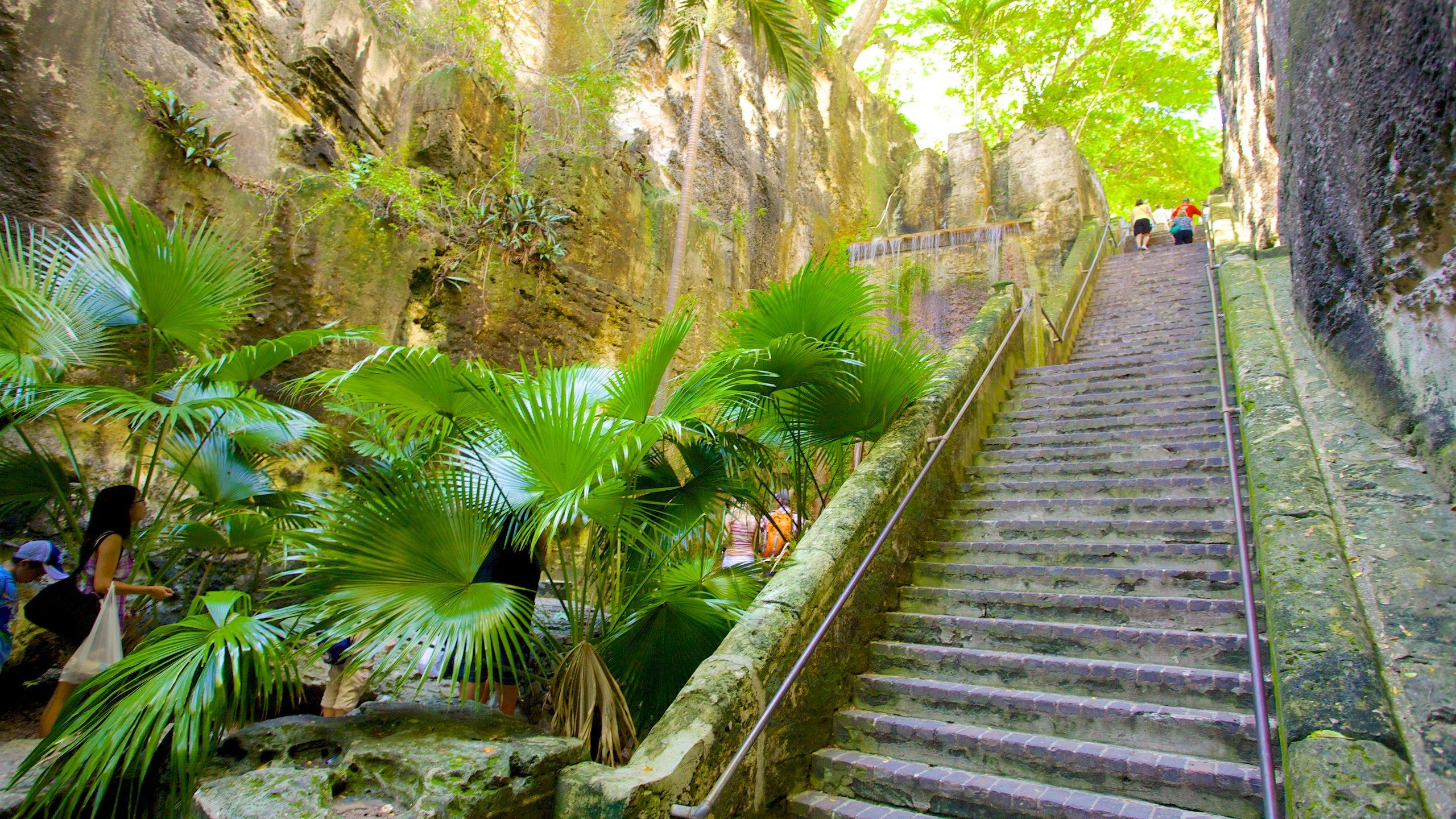 Diese von einem Wasserfall flankierte Kalksteintreppe, die zu Ehren des 65-jährigen Thronjubiläums von Königin Victoria benannt wurde, ist die am häufigsten besuchte Sehenswürdigkeit in Nassau.