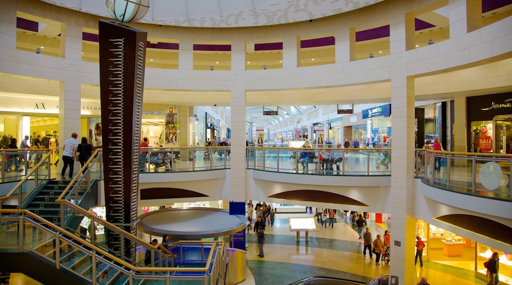 Bluewater Shopping Centre featuring shopping and interior views as well as a large group of people