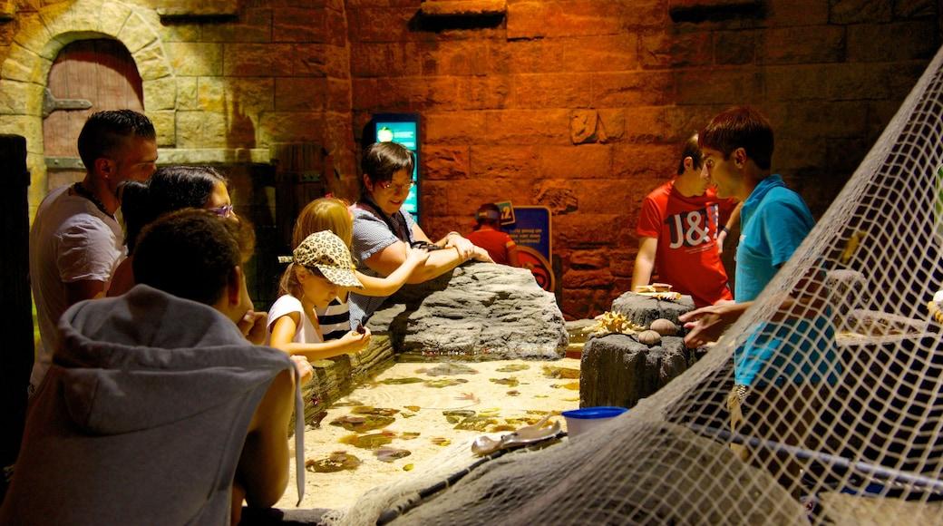 Sea Life Aquarium mit einem Innenansichten und Meeresbewohner sowie Kinder