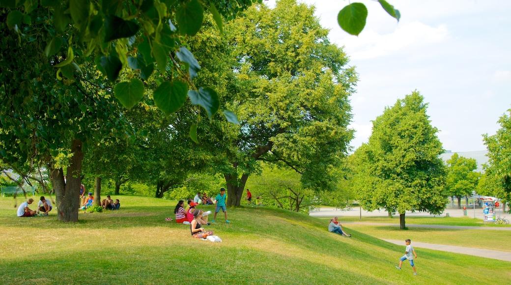 Olympiapuisto johon kuuluu puisto sekä suuri ryhmä ihmisiä