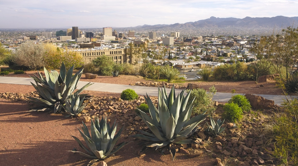 El Paso featuring a city and desert views