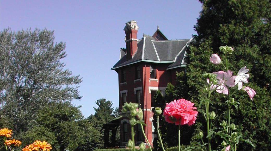 Cedar Rapids featuring a house and flowers