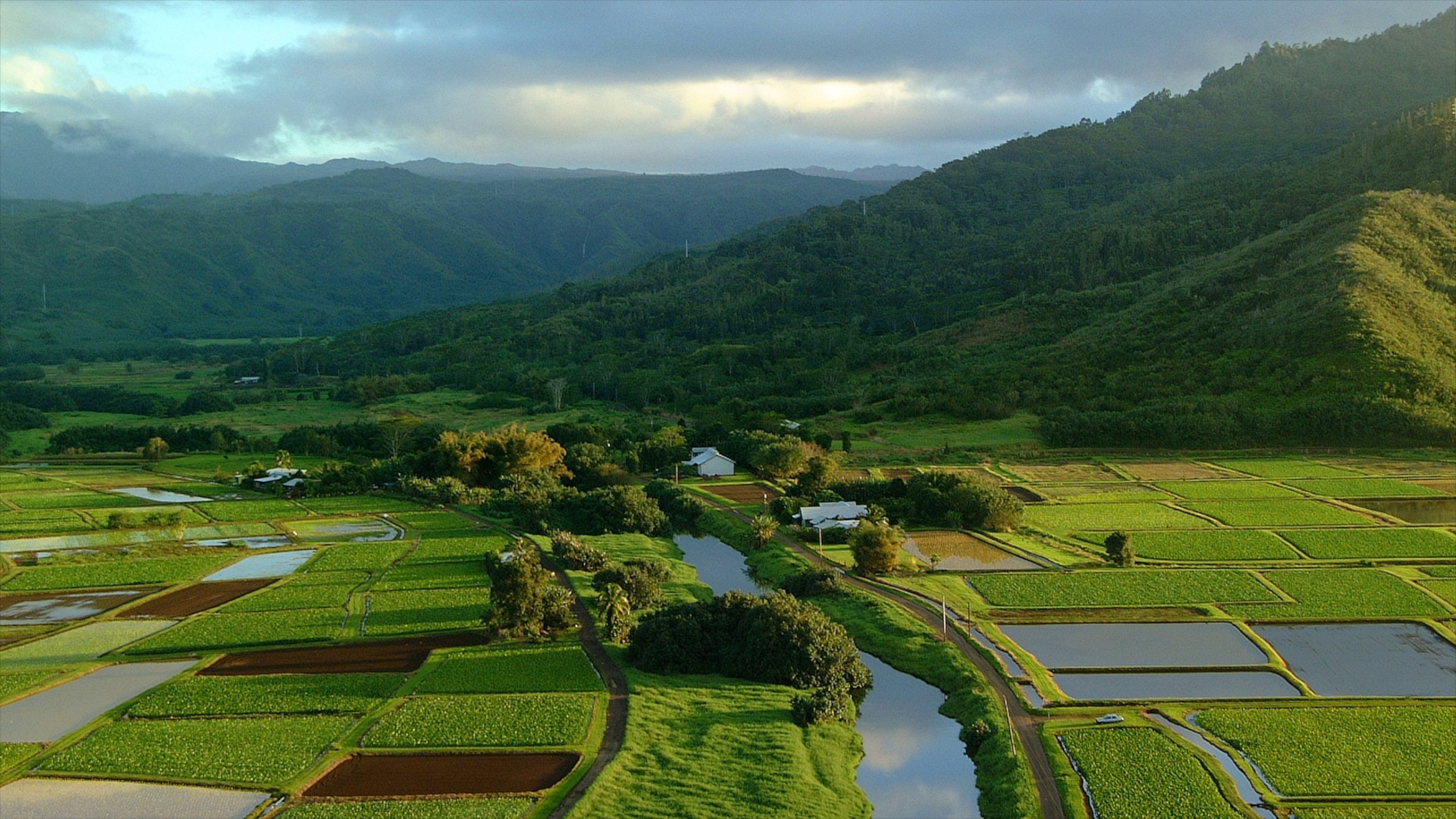 Hanalei Valley Lookout, Princeville, Hawaii, United States of America
