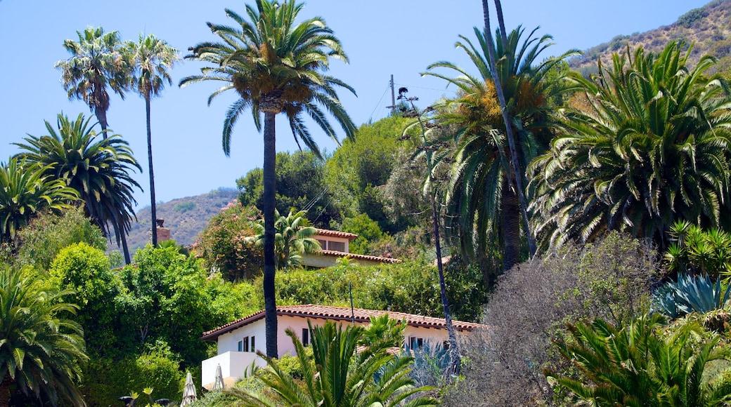 Malibu featuring a coastal town and a house