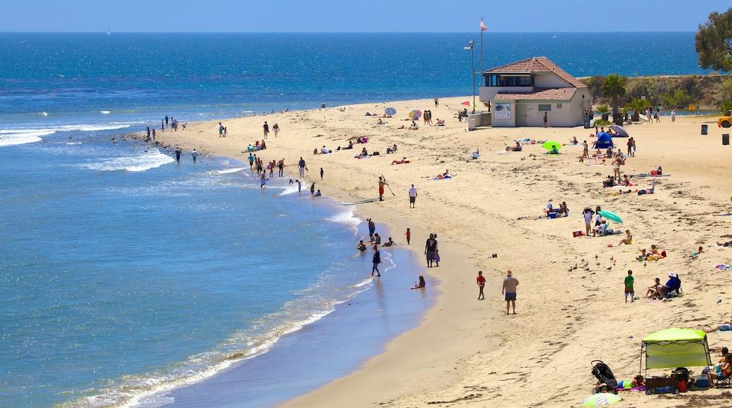Malibu showing swimming, a sandy beach and general coastal views
