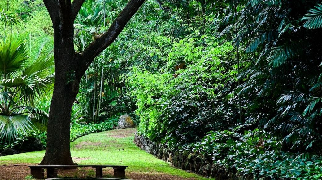 Kalaheo which includes forests and a garden