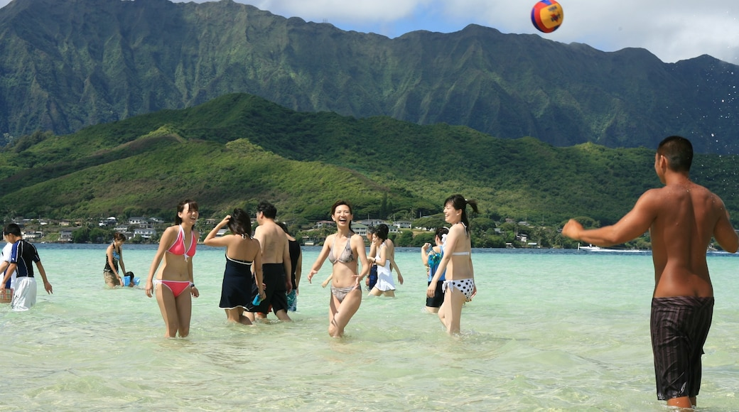 Kaneohe which includes mountains, swimming and general coastal views
