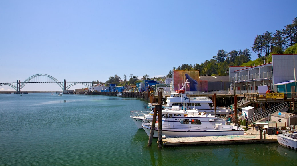 Newport which includes a bridge, boating and a bay or harbour