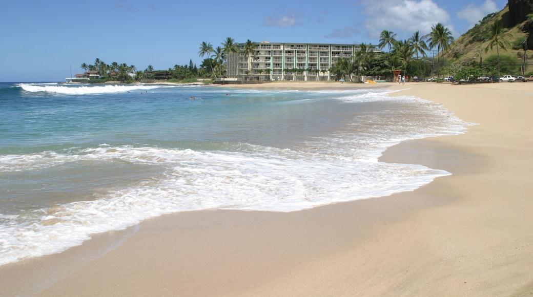 Makaha featuring tropical scenes, a beach and general coastal views