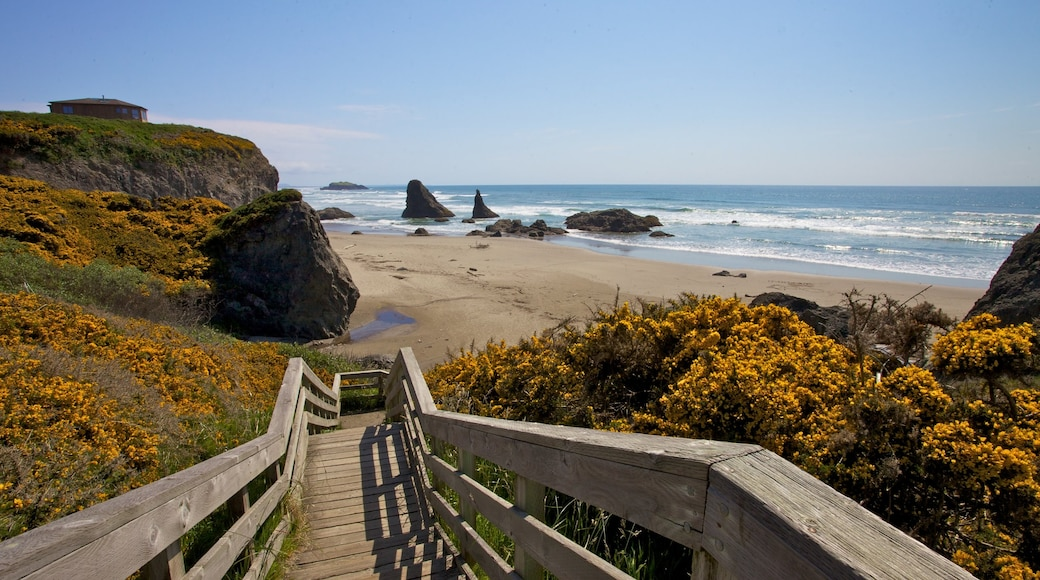 Bandon showing a beach and landscape views