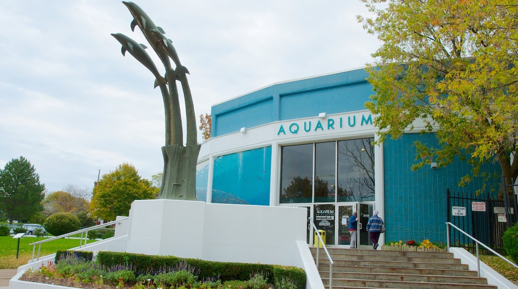 Aquarium of Niagara which includes art, marine life and a statue or sculpture