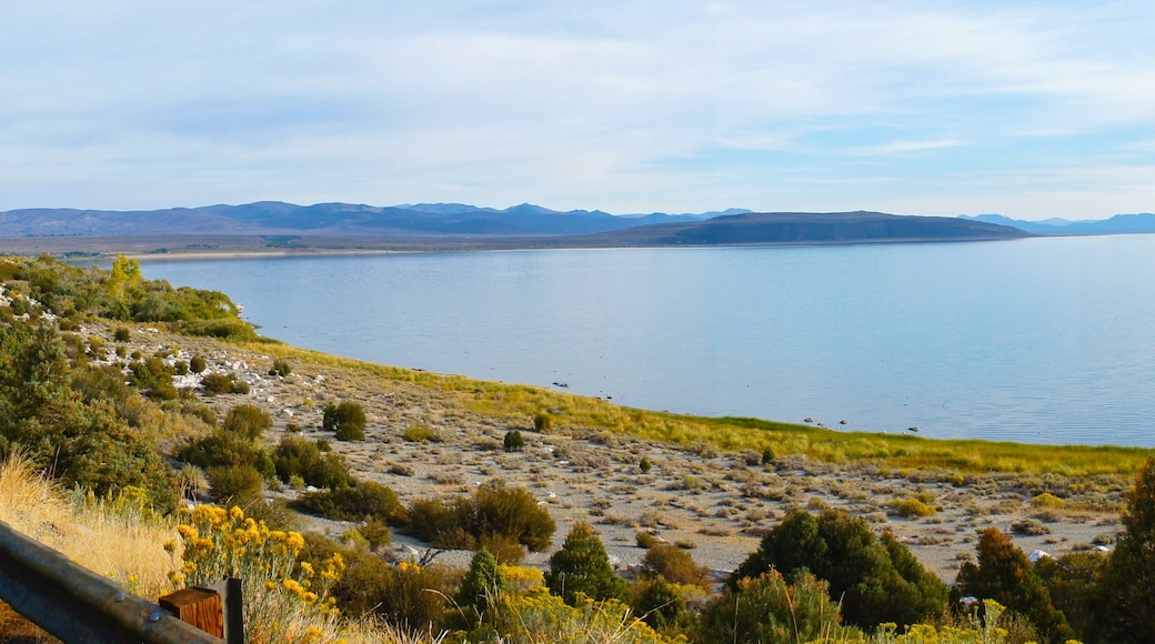 Mono Lake which includes landscape views and a lake or waterhole