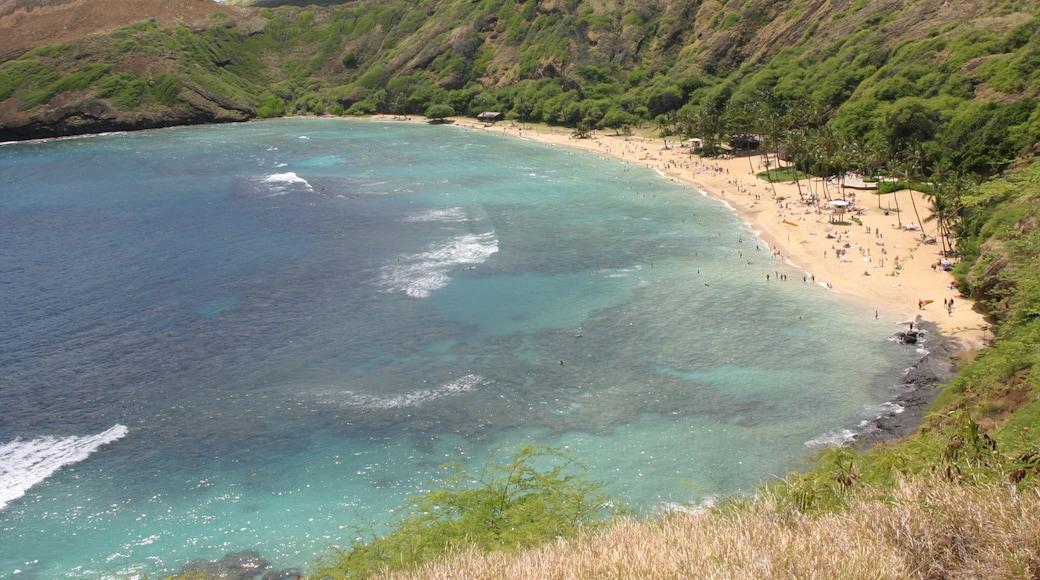 Hanauma Bay Nature Preserve featuring landscape views and a sandy beach
