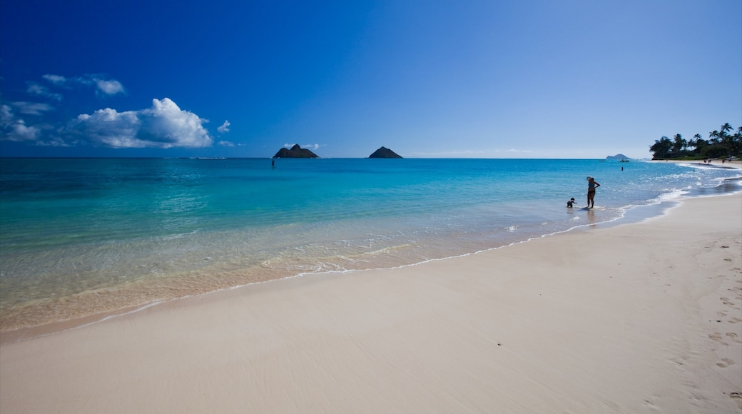 Kailua Beach featuring landscape views and a beach as well as a small group of people