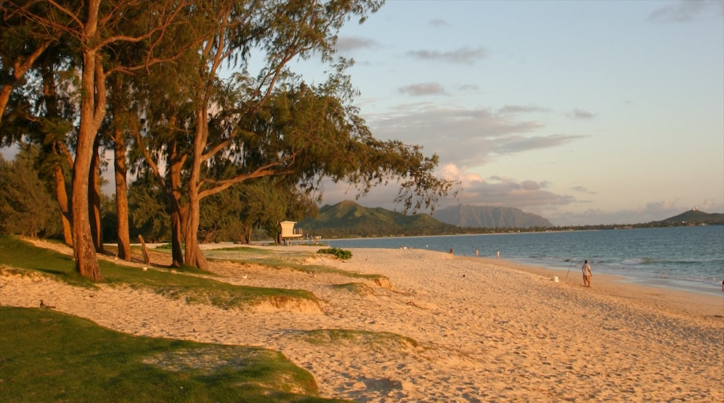 Waimanalo Beach showing landscape views, a sandy beach and a sunset