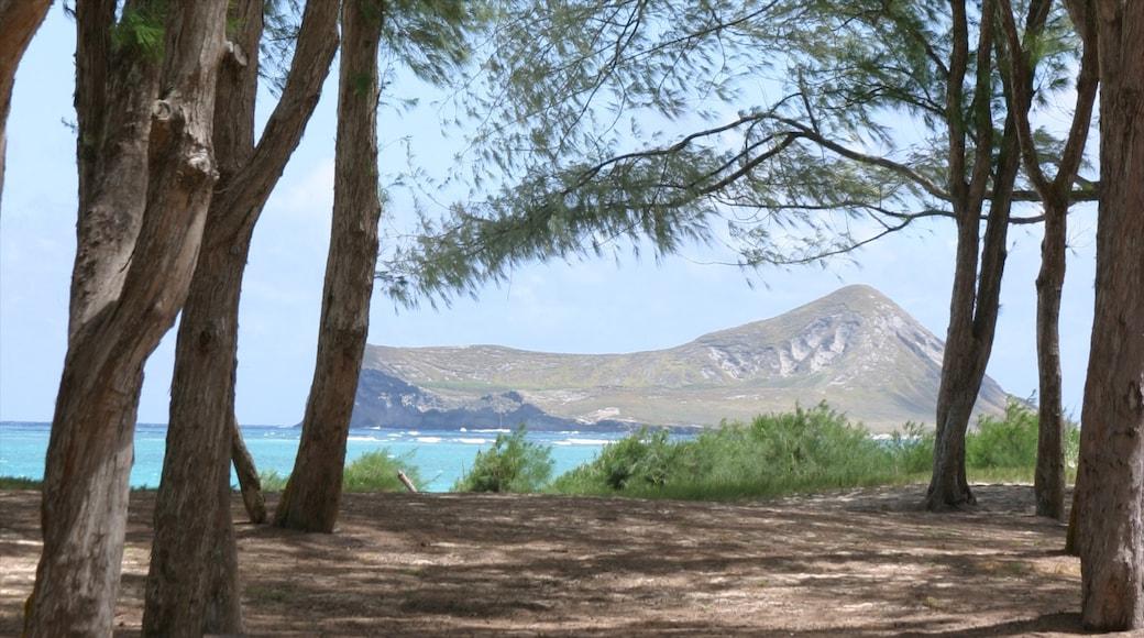 Waimanalo Beach showing landscape views, general coastal views and mountains