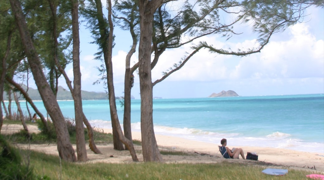 Waimanalo Beach which includes landscape views and a beach as well as an individual femail