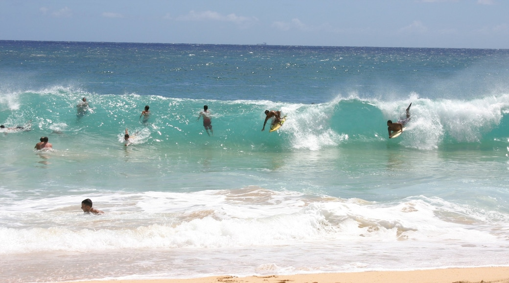 Makapuu Beach Park featuring landscape views, a beach and surfing