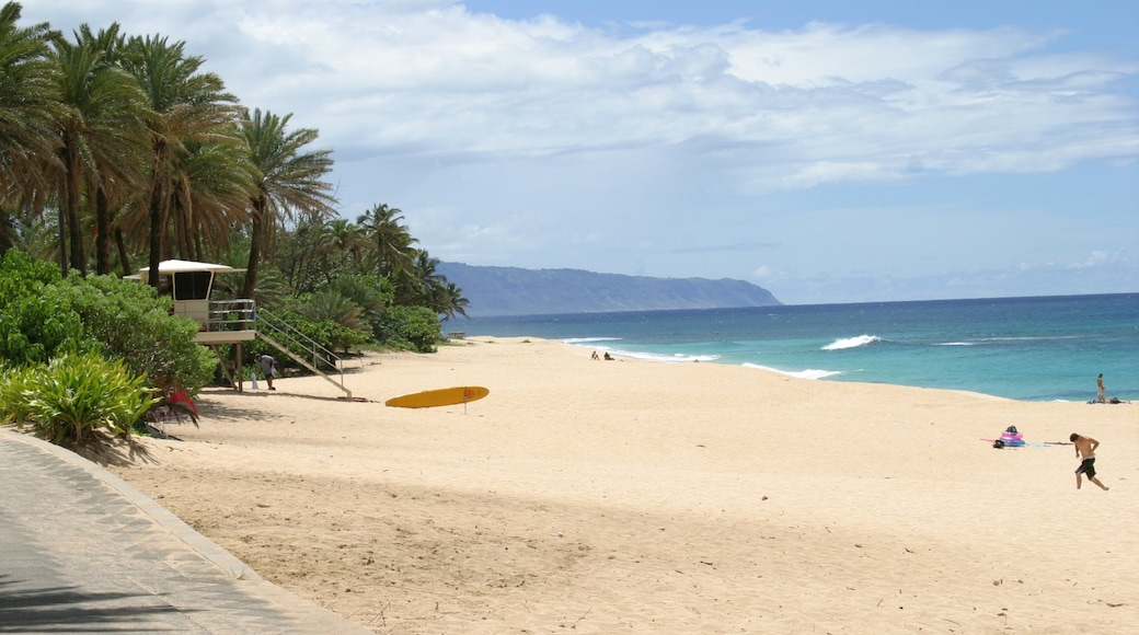 Sunset Beach which includes landscape views, tropical scenes and a sandy beach