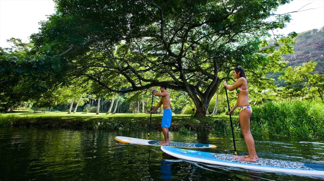 Waimea Bay featuring landscape views, a bay or harbor and watersports