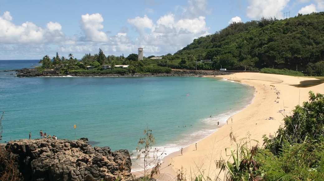 Waimea Bay featuring a sandy beach, landscape views and tropical scenes