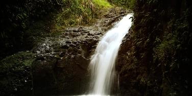 Haleiwa mostrando cascata e vista del paesaggio