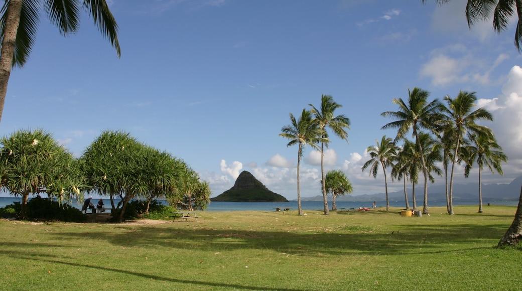Kualoa Beach Park showing general coastal views, mountains and tropical scenes