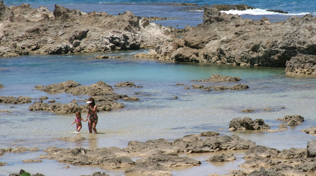 Pupukea Beach Park showing rugged coastline, landscape views and swimming