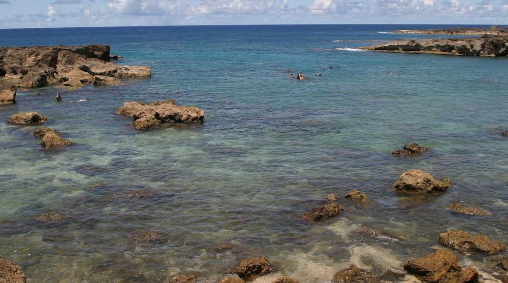 Pupukea Beach Park which includes landscape views, general coastal views and rocky coastline