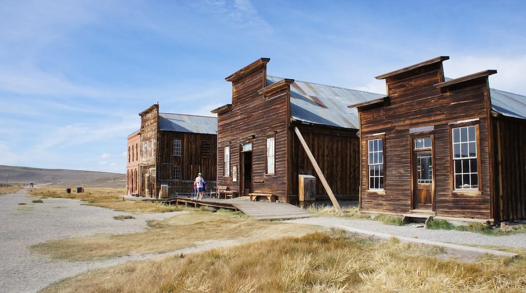 Bodie Historic District que inclui arquitetura de patrimônio, cenas tranquilas e uma casa