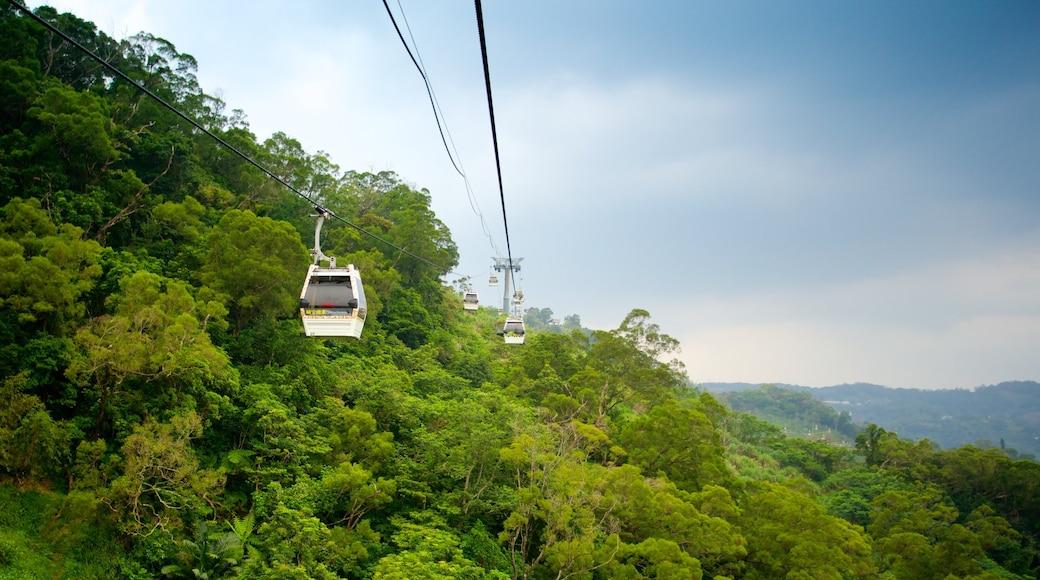 Maokong Gondola ซึ่งรวมถึง กอนโดลา, วิวทิวทัศน์ และ ภูเขา
