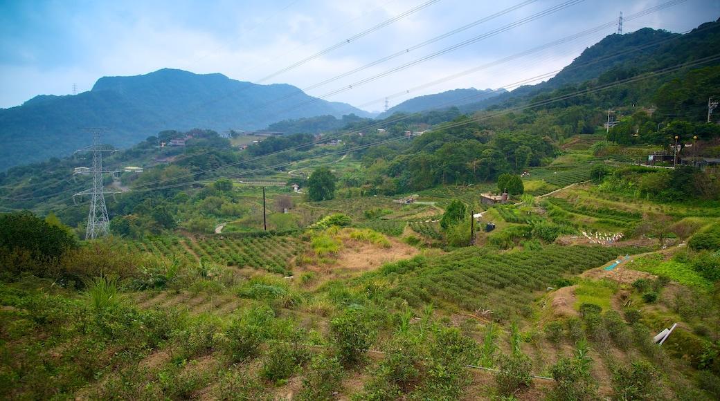 台北 其中包括 山, 山水美景 和 農地