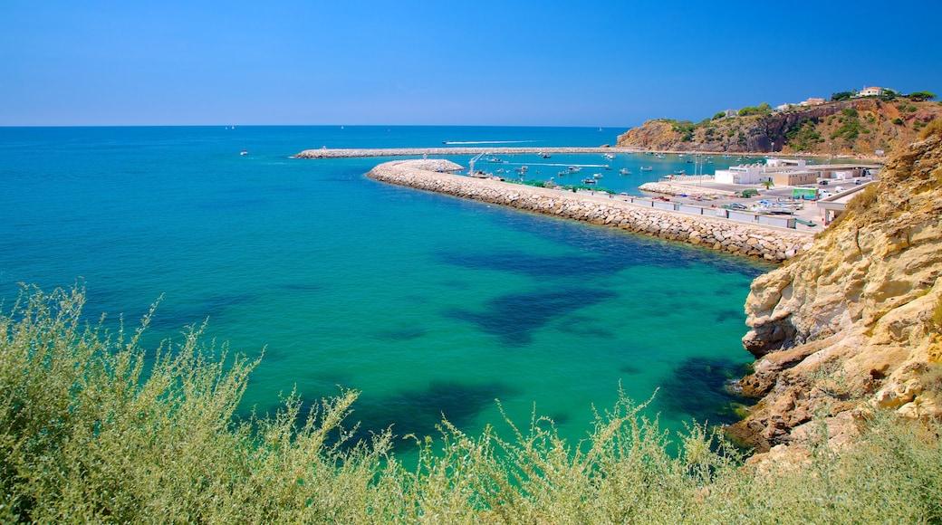 Albufeira mostrando una localidad costera, una bahía o un puerto y vistas panorámicas