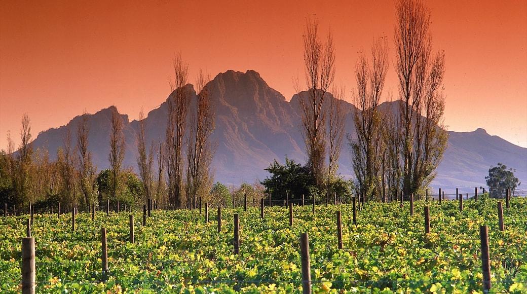 Franschhoek mit einem Berge, Landschaften und Sonnenuntergang
