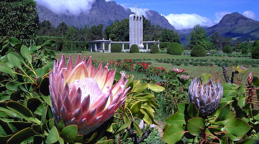Franschhoek welches beinhaltet Garten, Blumen und Berge