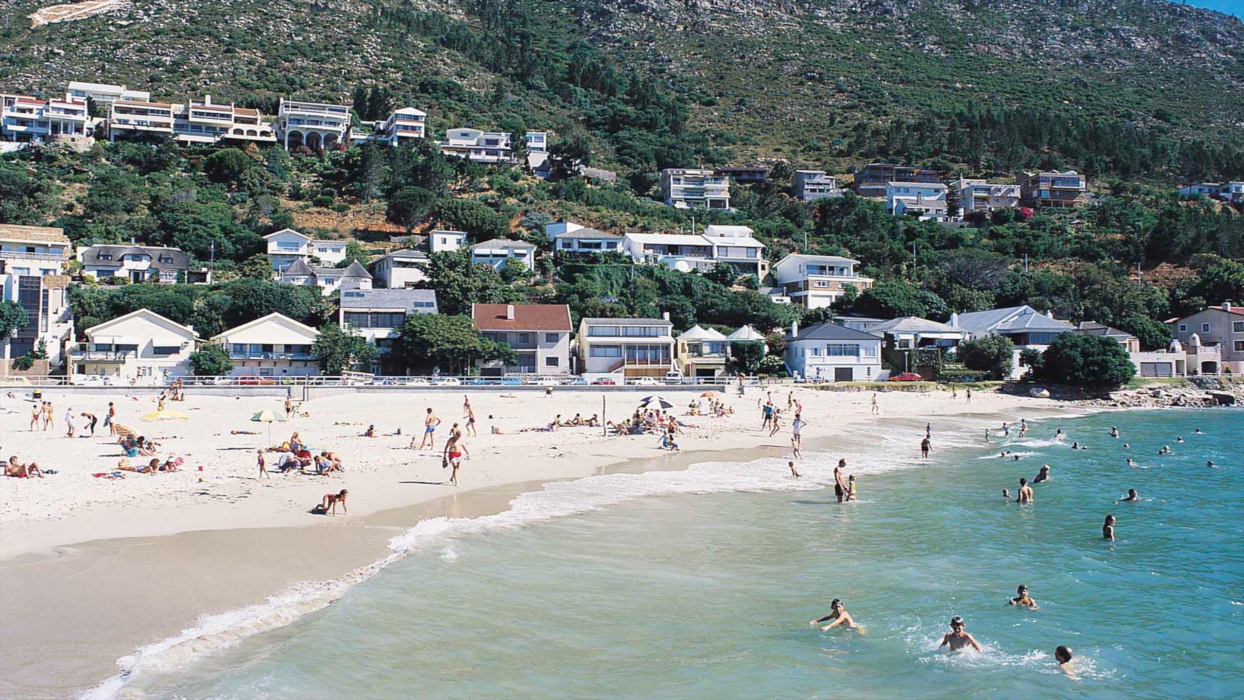 Gordon's Bay, Cape Town, Western Cape, South Africa