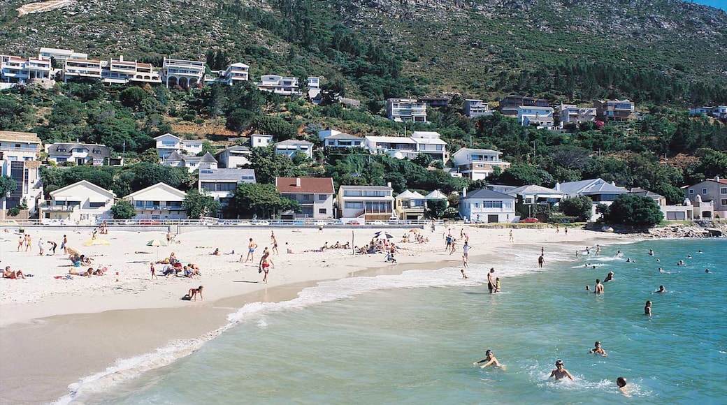 Gordon\'s Bay showing swimming, a coastal town and a sandy beach