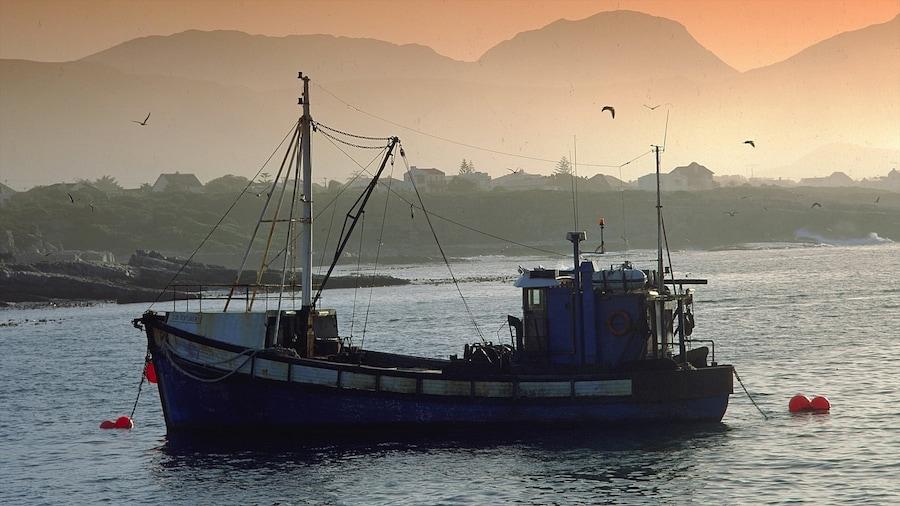 Hermanus ofreciendo paseos en lancha, una puesta de sol y una bahía o puerto