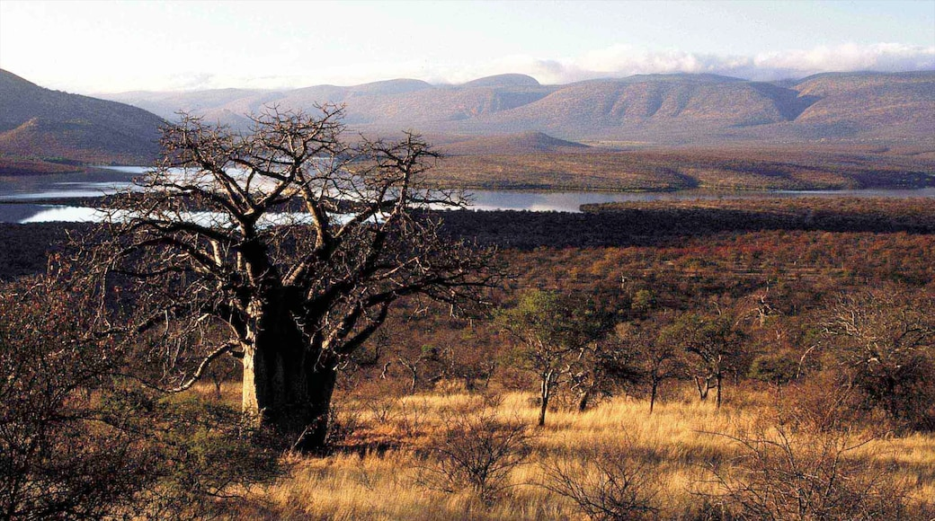 Musina which includes landscape views, a river or creek and tranquil scenes