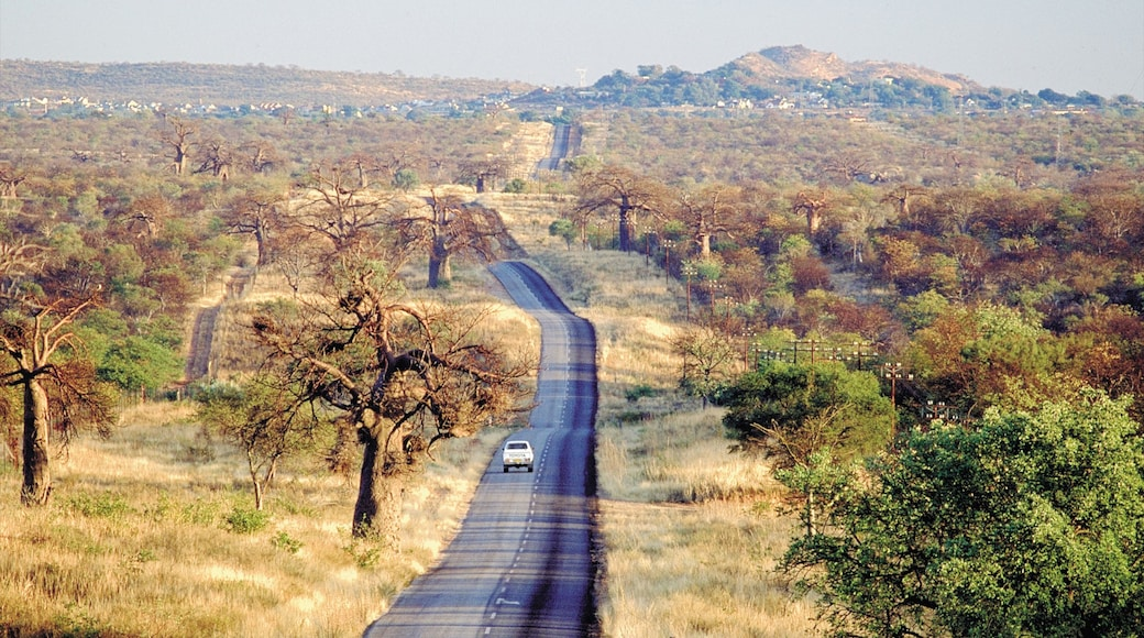 Musina which includes landscape views and tranquil scenes
