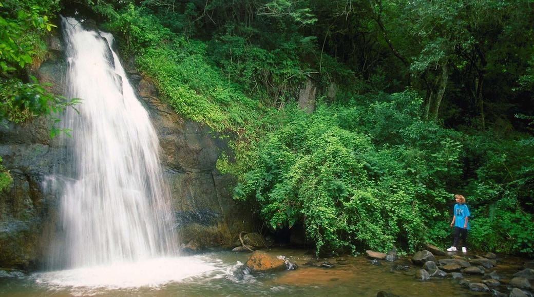 Graskop mit einem Landschaften, Wälder und Wasserfall
