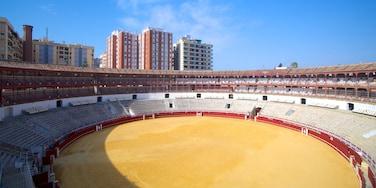 Plaza de Toros mettant en vedette ville